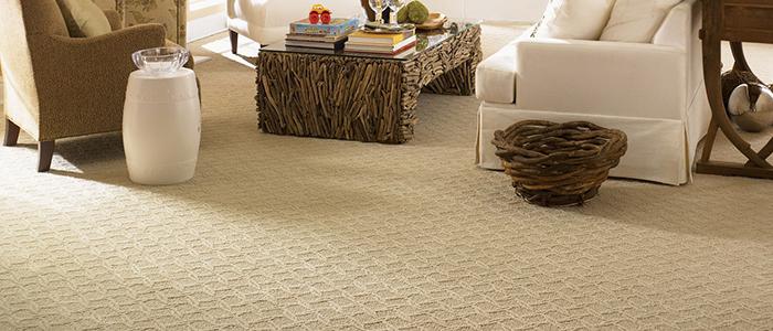Carpet Cleaning Ann Arbor MI