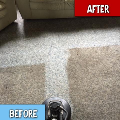 Carpet Cleaners Ann Arbor MI