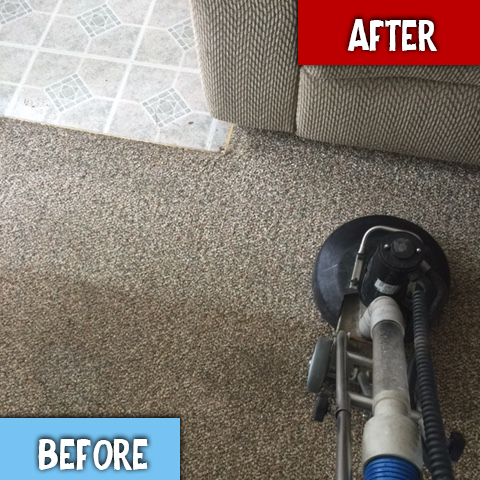Carpet Cleaning Ann Arbor MI